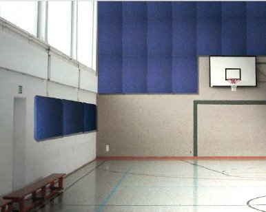 Prosonic High Impact Acoustic Panels for Sportshalls